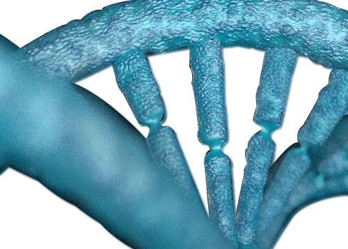 Ανάλυση Γονιδιώματος