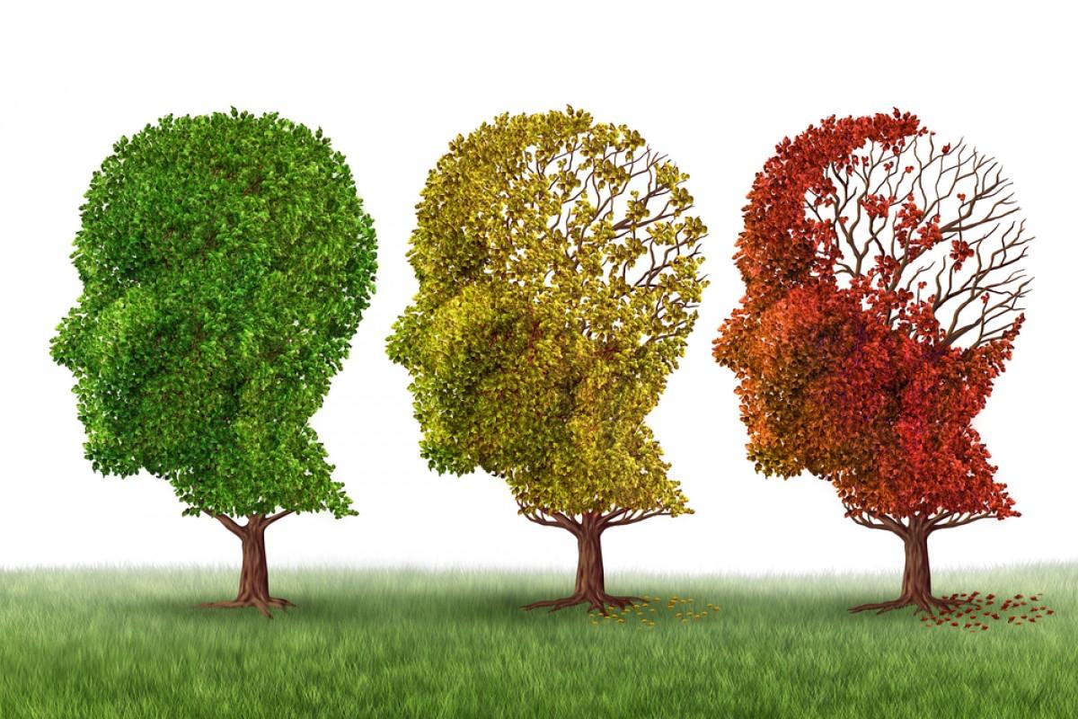 Νόσος του Alzheimer