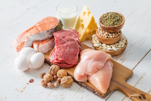 Why is Protein so important for your diet?